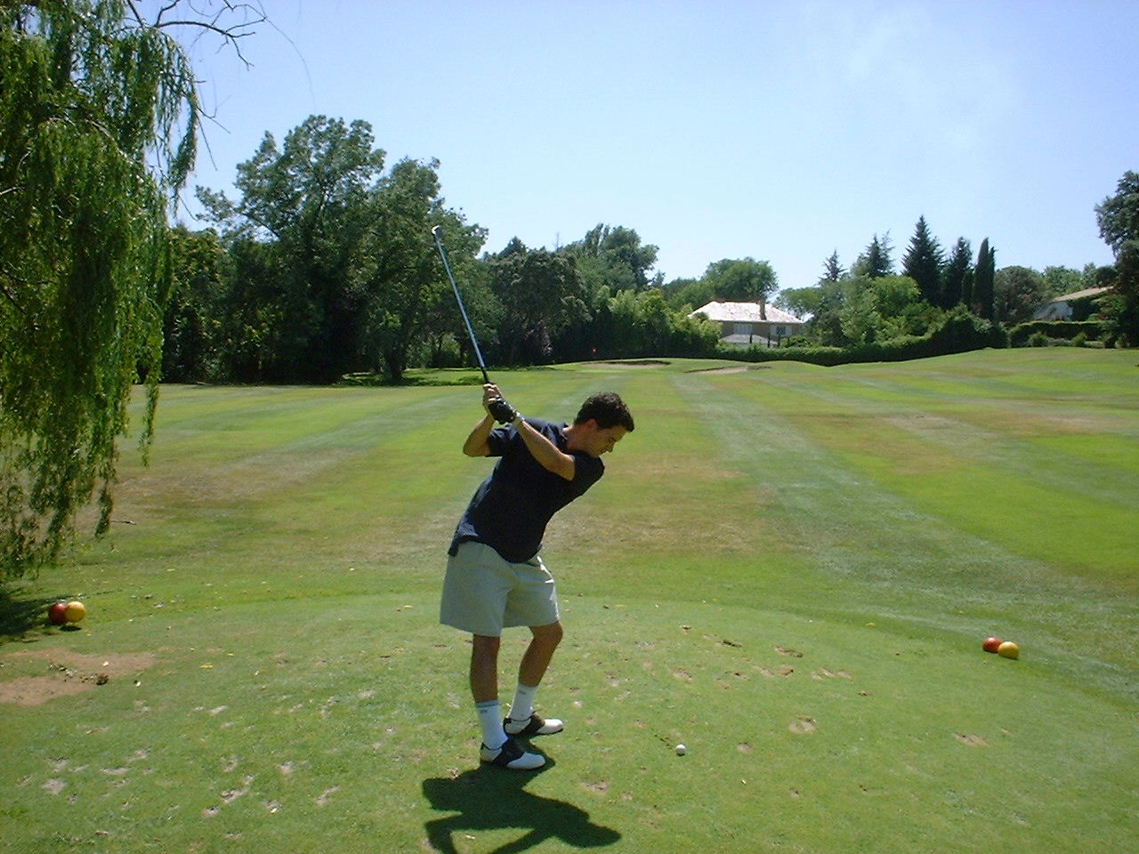 German Backswing